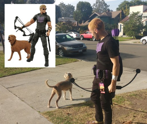 Seamus cosplaying Hawkeye's dog, Lucky.
